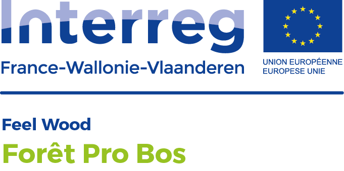 LogoProjets Feel Wood FORET PRO BOS